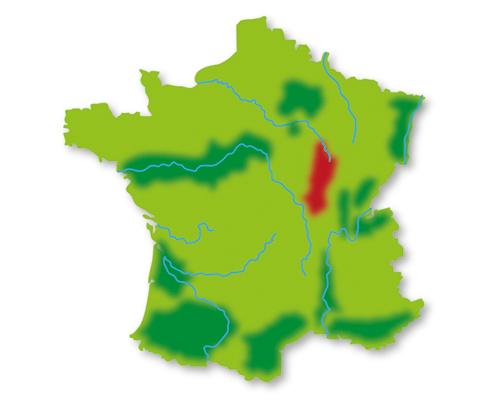 Lotte weet Wijn Frankrijk wijngebied Bourgogne