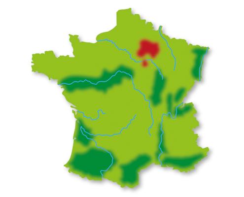 Lotte weet Wijn Frankrijk wijngebieden Champagne