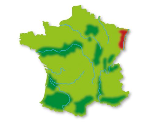 Lotte weet Frankrijk wijngebieden Elzas