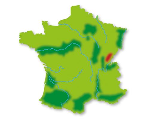 Lotte weet Wijn wijngebieden Jura