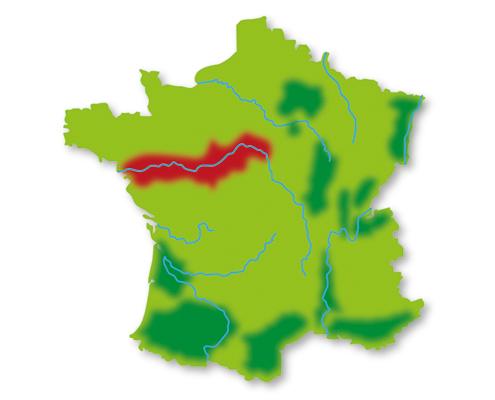 Lotte weet Wijn wijngebieden Loire