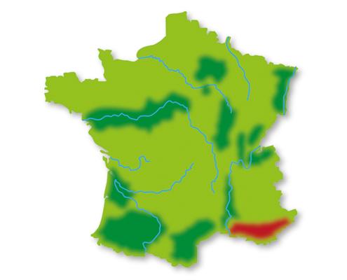 Lotte weet Wijn Frankrijk wijngebieden Provence en Corsica
