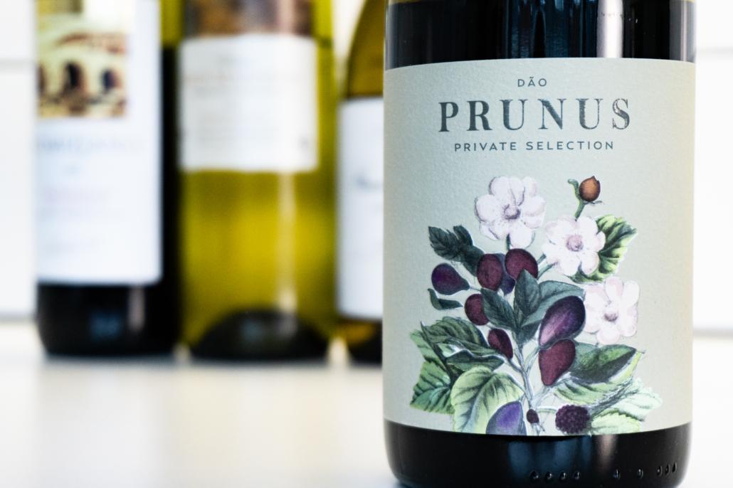 Proefnotitie Prunus Lotte weet Wijn